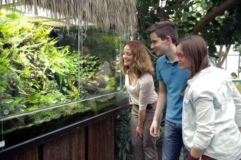 Kate Kitchenham mit Tom und Josefine vor dem Madagaskar Buntfrösche ...