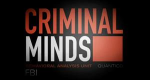 Criminal Minds Mediathek