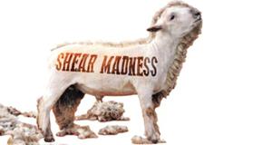 Schaf, Schäfer, am Schärfsten