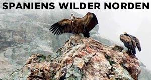 Spaniens wilder Norden
