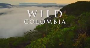 Wildes Kolumbien