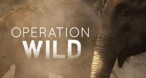 Operation Wild - Tierärzte in der Wildnis