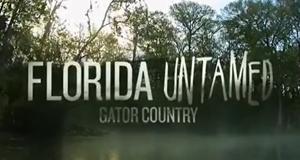 Wildes Florida