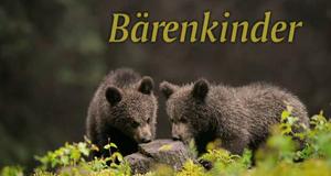 Bärengeschwister