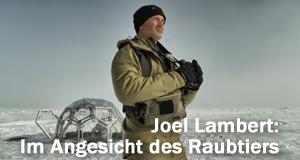 Joel Lambert: Im Angesicht des Raubtiers