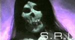 S.R.I. und die unheimlichen Fälle