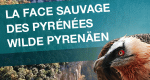 Wilde Pyrenäen