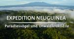 Expedition Neuguinea