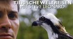 Tierische Weltreisen mit Steve Leonard