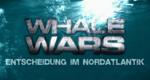 Whale Wars - Entscheidung im Nordatlantik