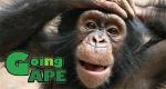 Dschungelmission - Einsatz für die Affen