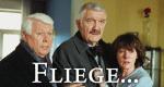 Fliege ...