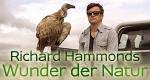Richard Hammonds Wunder der Natur – Bild: BBC One/Screenshot