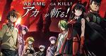 Akame ga Kill – Schwerter der Assassinen – Bild: Tokyo Metropolitan Televison