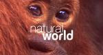 Natural World – Bild: BBC Two/Screenshot