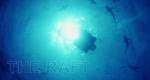 The Raft – Bild: National Geographic Channel/Screenshot
