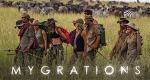 Mygrations - Quer durch die Serengeti