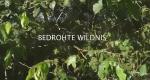 Bedrohte Wildnis