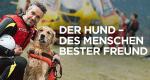 Der Hund - Des Menschen bester Freund