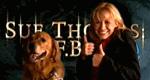 Sue Thomas: F.B.I.