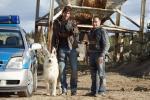 Hundstage (Staffel 16, Folge 10) – © RTL