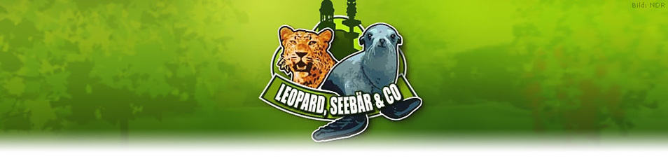 Leopard, Seeb�r & Co.