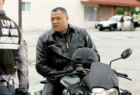 CSI: Bräute, Blut und Banden