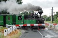 Eine vier Kilometer lange Schmalspurbahn fährt Richtung Fertöboz. Zusammengestellt aus ehemaigen Wald- und Industriebahnen entstand die frühere sozialistische Pionierbahn - den Spaß an der Eisenbahn haben die Kinder immer noch, auch als Nicht-Pioniere. – © SWR/Harald Kirchner