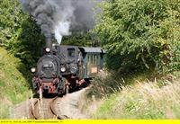 Der Reblaus Express – eine Reise vom Wein- ins Waldviertel (Folge 757) – © SWR Fernsehen