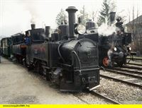 """SWR Fernsehen EISENBAHN-ROMANTIK FOLGE 396, """"Die Ybbstalbahn"""", am Montag (10.03.14) um 14:15 Uhr. U1 und Mollu auf der Ybbstalbahn. – © SWR"""