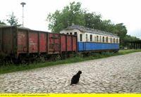 Usedomer Bäderbahn – die Geschichte einer Inselbahn (Folge 747) – © SWR Fernsehen