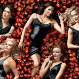 Desperate Housewives Logo Cover  – © ABC