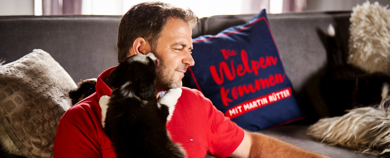 Martin Rutter Kummert Sich Bald Um Hundewelpen Die Welpen Kommen Am Sonntagvorabend Bei Rtl Tv Wunschliste