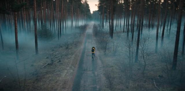 Der bedrohliche Windener Wald