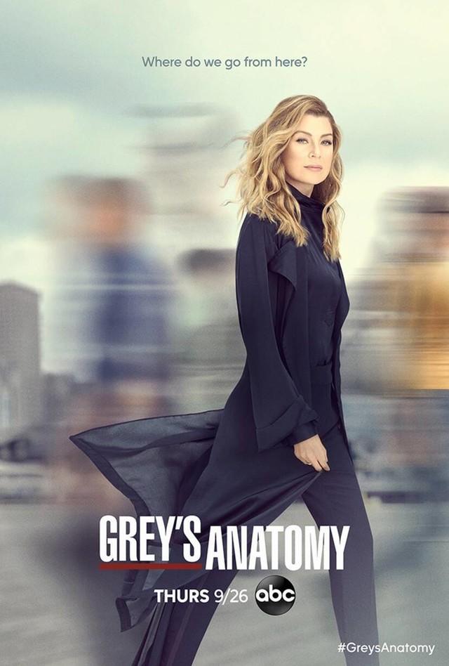 """Poster zur 16. Staffel von """"Grey's Anatomy"""""""