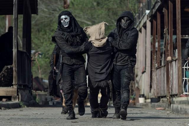 Daryl (Norman Reedus) wird von den Reapern verschleppt und befragt.