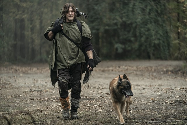 Daryl (Norman Reedus) und Dog sind wieder auf sich allein gestellt.