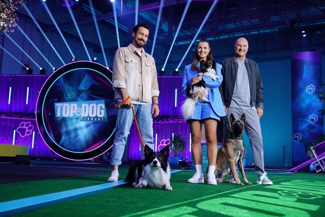 """""""Top Dog Germany - Der beste Hund Deutschlands"""""""