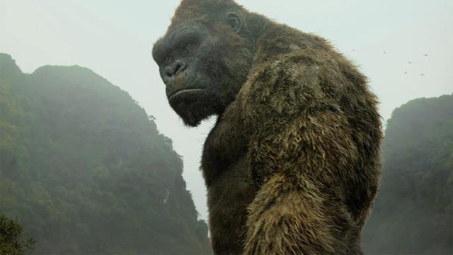 "King Kong im Film ""Kong: Skull Island"" (2017)"