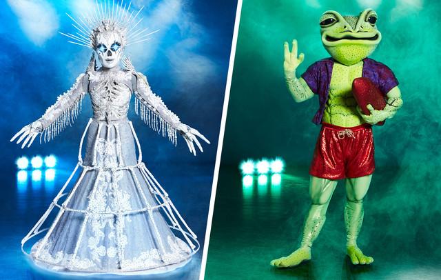 Das Skelett und der Frosch
