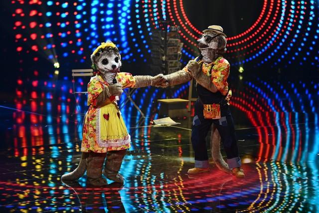 """Das erste Duo auf der Bühne von """"The Masked Singer"""": Frau und Herr Erdmann"""