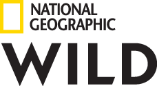 National Geographic WILD (Pay-TV)